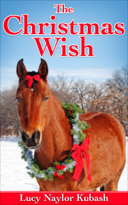 lmktek72_The_Christmas_Wish ebook